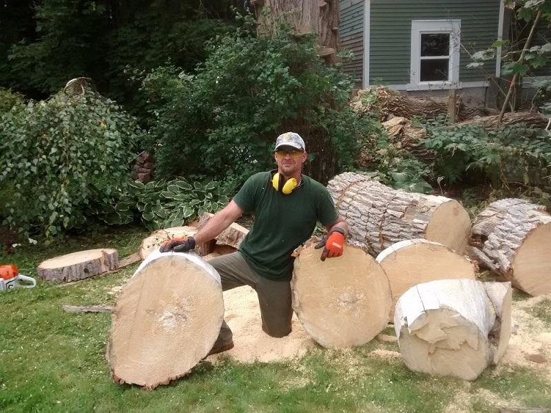 St. John's Arborist